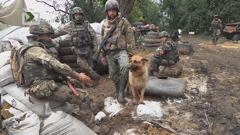 Війна на Донбасі: в ООН назвали кількість загиблих за 5 років