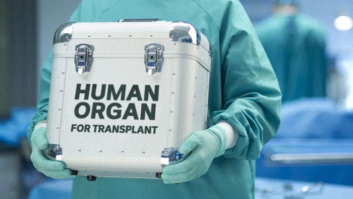 В Україні офіційно встановлено ціни на пересадку органів