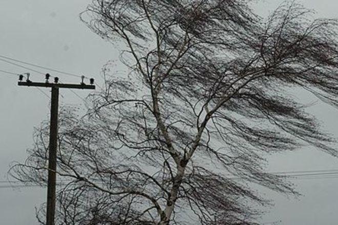 В Україні оголошено штормове попередження! Чого чекати від погоди у неділю