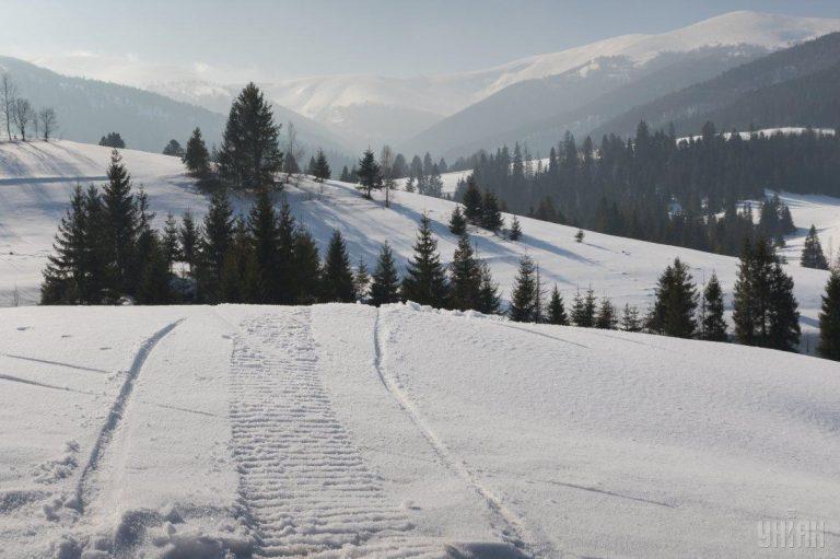 Карпати повністю засипало снігом