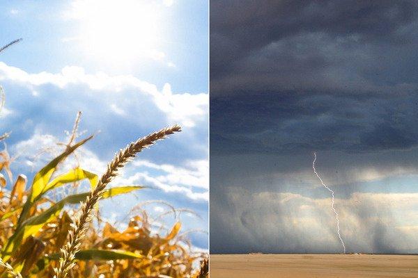 Коли потеплішає в Україні: синоптик дав прогноз і попередив про температурні коливання