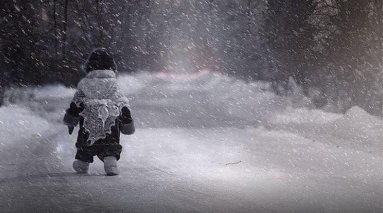 П'ятирічну дівчинку в мороз висадили в лісосмузі