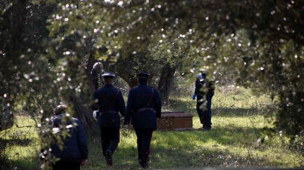 В Італії знайшли українку, повішену на оливковому дереві. Самогубство чи убивство?
