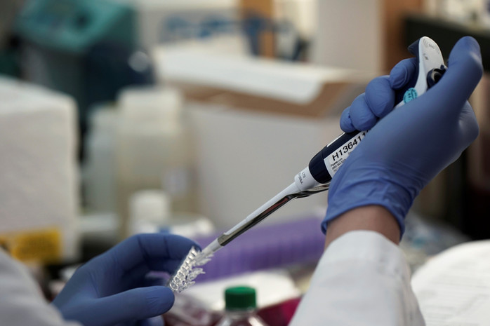 У Чехії виявили новий штам коронавірусу: що відомо
