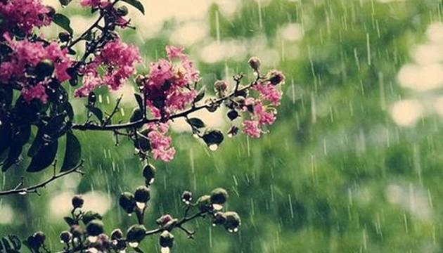В Україні погіршиться погода: два циклони принесуть похолодання, дощі та мокрий сніг