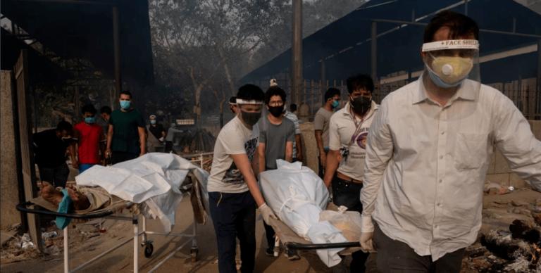 """""""Схоже на програну битву"""": в Індії фіксують захворювання смертельним """"білим грибком"""""""