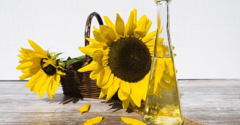 В Україні злетіли ціни на соняшникову олію: яка вартість і чого очікувати