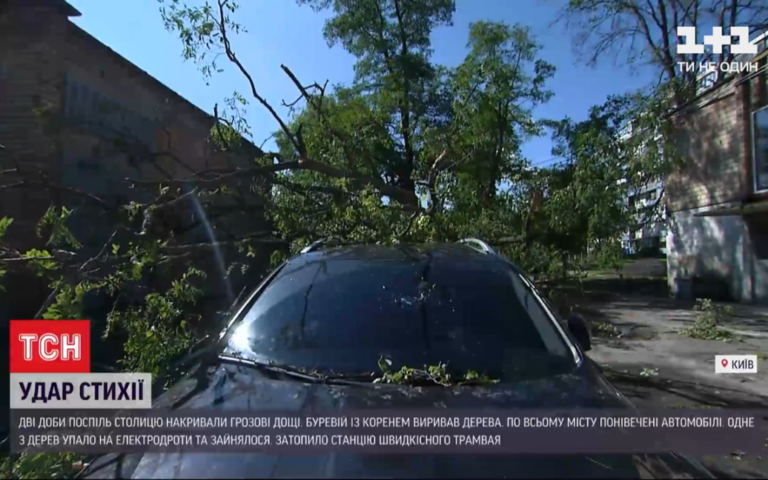 Сотні повалених дерев, десятки потрощених автомобілів: наслідки стихії у Києві